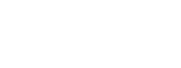 Lincoln Digital Awards - Winner 2016 - Best Ecommerce Website