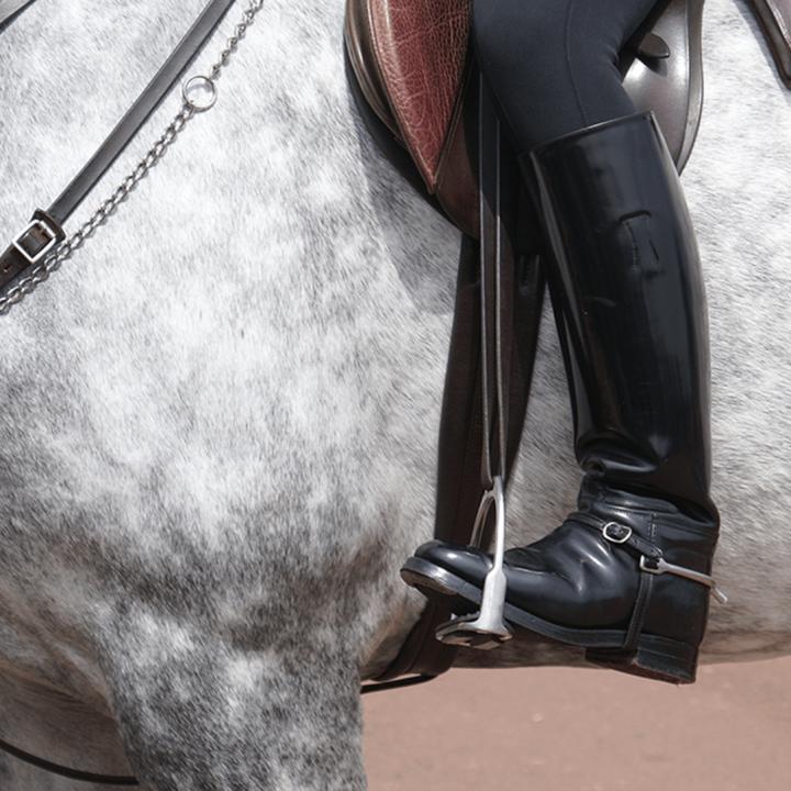 Horse_Shop_Brand_Image_1