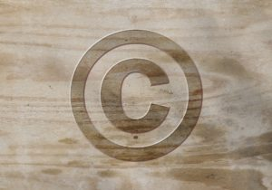 spiral Media how to copyright your website